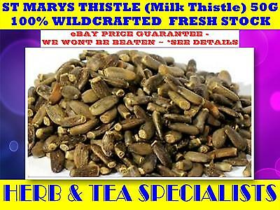 ST MARYS THISTLE (Milk Thistle)  50G TEA ☆100% WILDCRAFTED Silybum marianum☆SAVE
