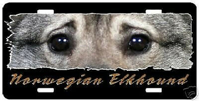 """Norwegian Elkhound """" The Eyes Have It """"  License  Plate"""