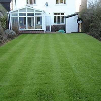 20kg General All Purpose Grass Seed - For A Hard Wearing, Low Maintenance Lawn