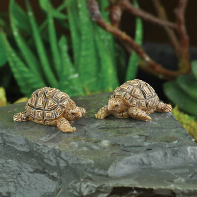Miniature Dollhouse FAIRY GARDEN - Mini Tortoises - Set Of 2 - Accessories