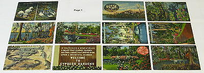 1930s 1940s 1950s FLORIDA Attractions AMUSEMENT PARKS Postcard lot, 43 Postcards