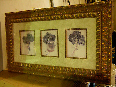 Beautiful Hydrangear set of 3 in one (REDUCED