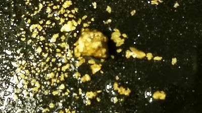 Virginia Gold Paydirt - 2-3lbs -  Gimmick Free paydirt - FREE GOLD