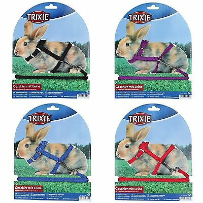Rabbit or Guinea Pig Harness & Detachable Buckle Fasten Lead Choose Colour 6150