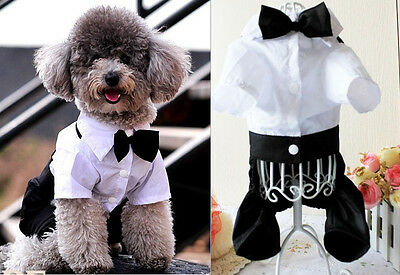 HOT Puppy Apparel Small Pet Dog Clothes Western Style Men's Suit & Bow Tie L