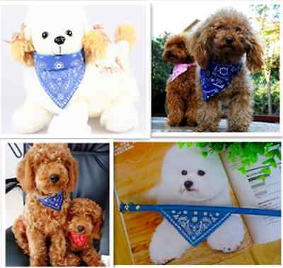 Blue Adjustable Small Pretty Pet Dog Puppy Cat Neck Scarf Bandana with Collar