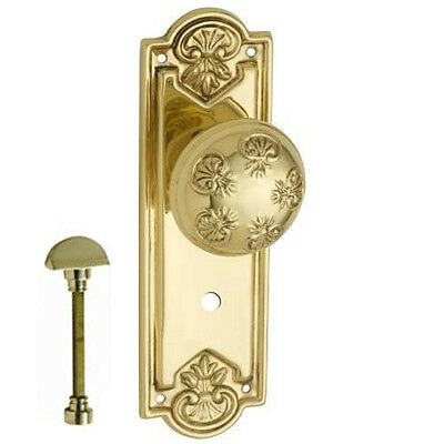 Nouveau Privacy Door Handle-Polished Brass-188x58mm-Pair- DFTH1053P
