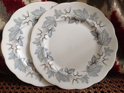 Two starter plates royal Albert silver maple first quality great condition lot 3