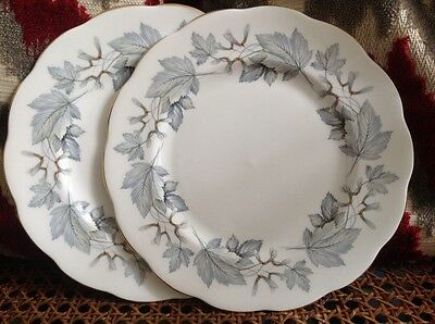 Two starter plates royal Albert silver maple first quality great condition