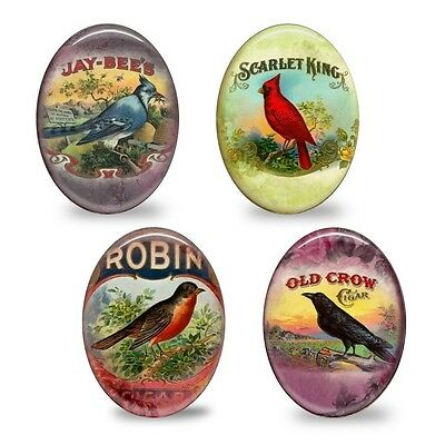 4x HUGE Bird Vintage Mood Glass Oval Cameo Cabochon 30x40mm - Group A