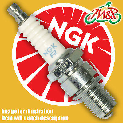 Beta REV 3 200 Trials 2004 Genuine NGK Spark Plug