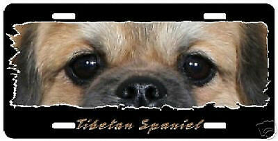 "Tibetan Spaniel   "" The Eyes Have It "" License  Plate"