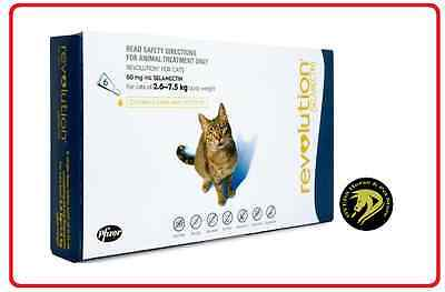 Revolution for Cats Blue 2.6-7.5kg 6 pack