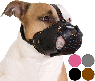 Secure PitBull Dog Muzzle Staffordshire Terrier Amstaff Leather Basket
