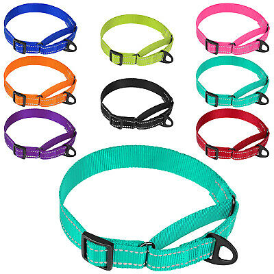 Rolled Leather Dog Collar Martingale Choke 10 Size SOFT Padded with FREE ID TAG