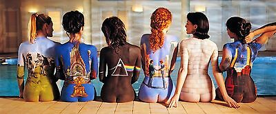 Pink Floyd Back Catalogue Album Art Stretched Canvas Wall Poster Print Music