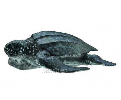 CollectA 88680 Leatherback Sea Turtle Sealife Toy Model - NIP