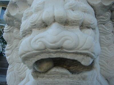 Architectural Garden Chinese Guardian Lion Carved Marble Foo Dogs