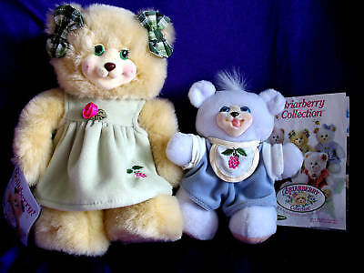 Briarberry Mollyberry & Baby Joey Mint by Fisher Price