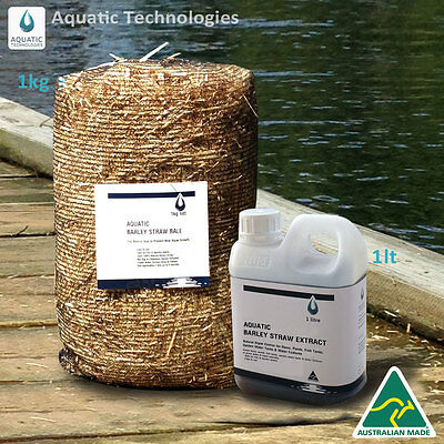 Barley Extract 1lt + Barley Straw Bale 1kg -To suppress algae growth in ponds