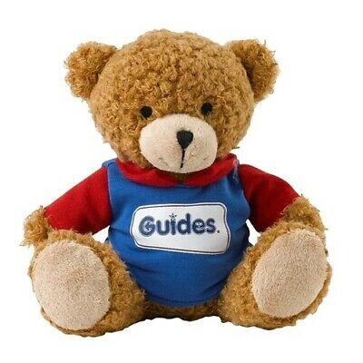 Guide Teddy Wearing A Hoodie Guides Uniform New
