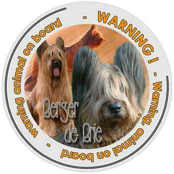 Circular Dogs sticker attention Briard on board