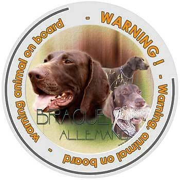 Circular Dogs sticker attention German Shorthaired Pointer on board