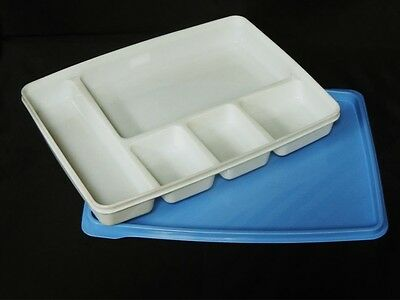 Plastic Injection Mold for Tray with Dividers