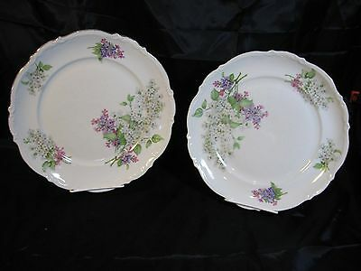 Vintage Mitterteich Bavaria Lilac Dinner Plates Germany Set of Two