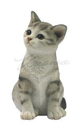 Sitting Tabby kitten sculpture figurine collectible color