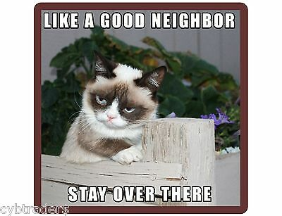 Grumpy Cat Stay Over There Funny Refrigerator Tool Box Magnet Gift Card Insert