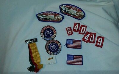LOT 0F 16 BSA PIECES  ARROW of LIGHT WEBELOS