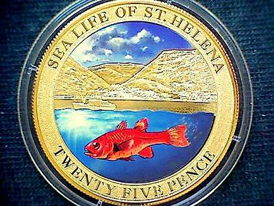 SAINT HELENA 2013 25 PENCE, SEA LIFE SERIE, FISH **, COLOURED Cu-Ni GOLD PLATED