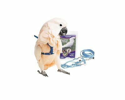 Premier Feather Tether Bird Harness and Leash MEDIUM GRAY for Mini Macaws