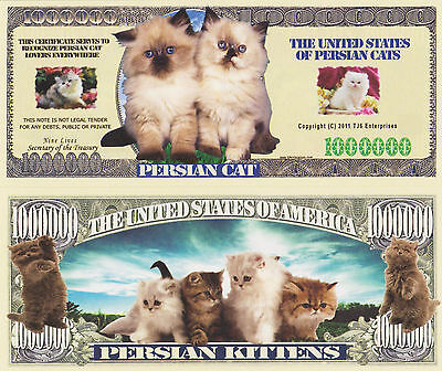 RARE: Persian Cat $1,000,000 Novelty Note, Feline Buy 5 Get one FREE