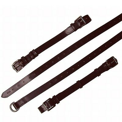 Porsche 911 Interior Luggage Straps Brown Leather Polished Brass Hardware