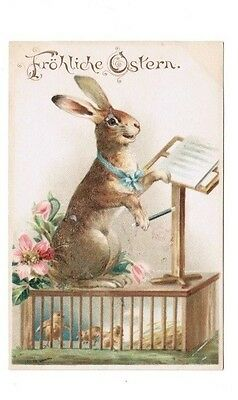 c1905 Easter – Frohliche Ostern – Rabbit Conducting Music on Stand W/ Chicks UDB