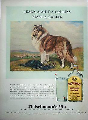 1940 Fleischmanns Gin Herding Dog Collie Devotion Sheep ad