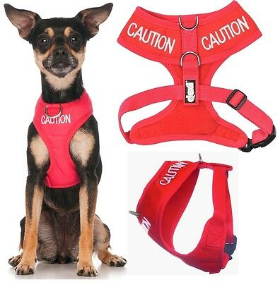 Dogs Vest Harness Non Pull Front Back Ring Red CAUTION Warning Padded Waterproof