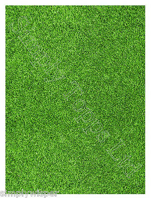Grass Lawn Printed Sugar Icing Sheet edible cake decoration craft field pitch