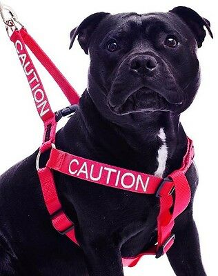 Color Coded Dog Harness Non Pull CAUTION Red Warning Super Strong Total Control