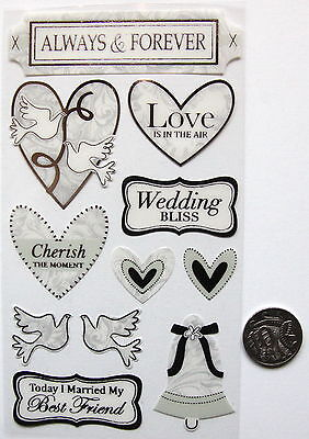 SCRAPBOOKING NO 253 - 11 Piece Medium to Large SILVER WEDDING ACETATE STICKERS