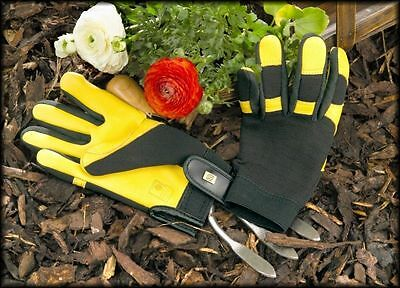 Gold Leaf 'Soft Touch' leather gardening gloves - 2 FREE PACKETS OF SEEDS