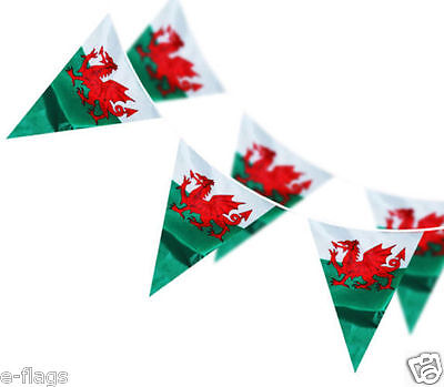 Massive 100Ft Of Wales Cymru Welsh Dragon Triangle Flag Rugby Bunting
