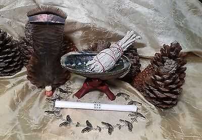 Smudge Kit: Abalone Shell, Instructions, 1 California White Sage, Stand, FEATHER