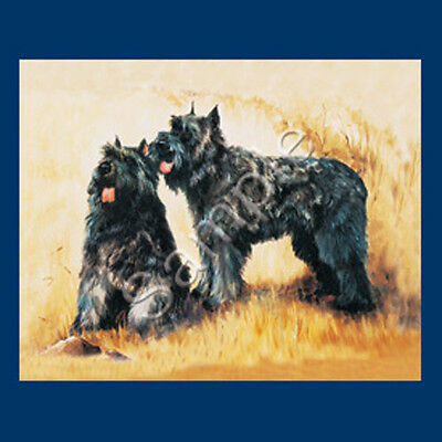 Best Friends Ruth Maystead List Pad & Pencil NEW Bouvier des Flandres