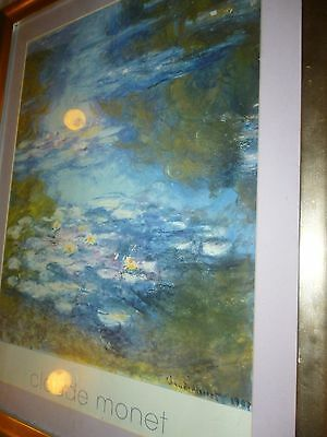 WATER LILLY ABSTRACT BOTANICAL REPRODUCTION PRINT POSTER FRAMED VERY LARGE