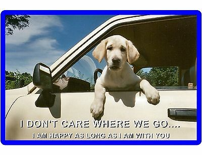 Happy Dog Labrador Retriever Refrigerator / Tool Box  Magnet Gift Card Insert