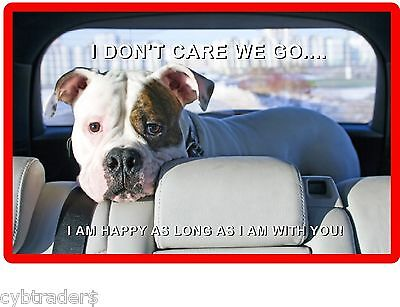 Funny Dog Pit Bull Terrier Sniff It Refrigerator Tool  Box  Magnet #C1