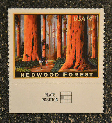 2009USA #4378 $4.95 Redwood Forest - Priority Mail - Selvage Single - Mint